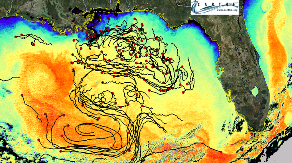 ECOGIG researchers characterize seasonal evolution of circulation patterns in the surface waters of the Gulf of Mexico