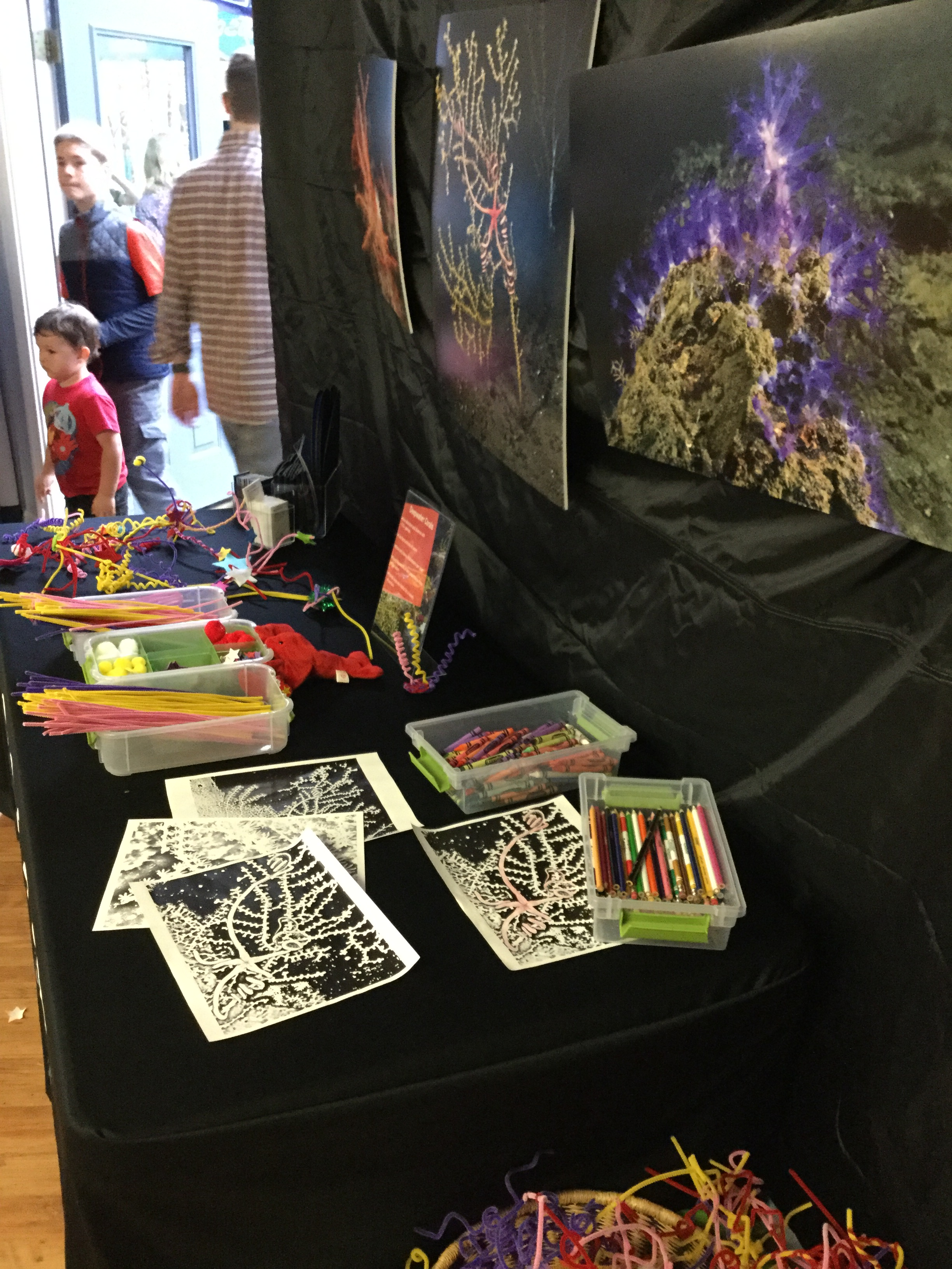 <div style='color:#000000;'><br /><br /><h2>Athens Montessori Fall Festival 2015- Build, draw, learn about deep sea coral station</h2>(C)&nbsp;ECOGIG</div>