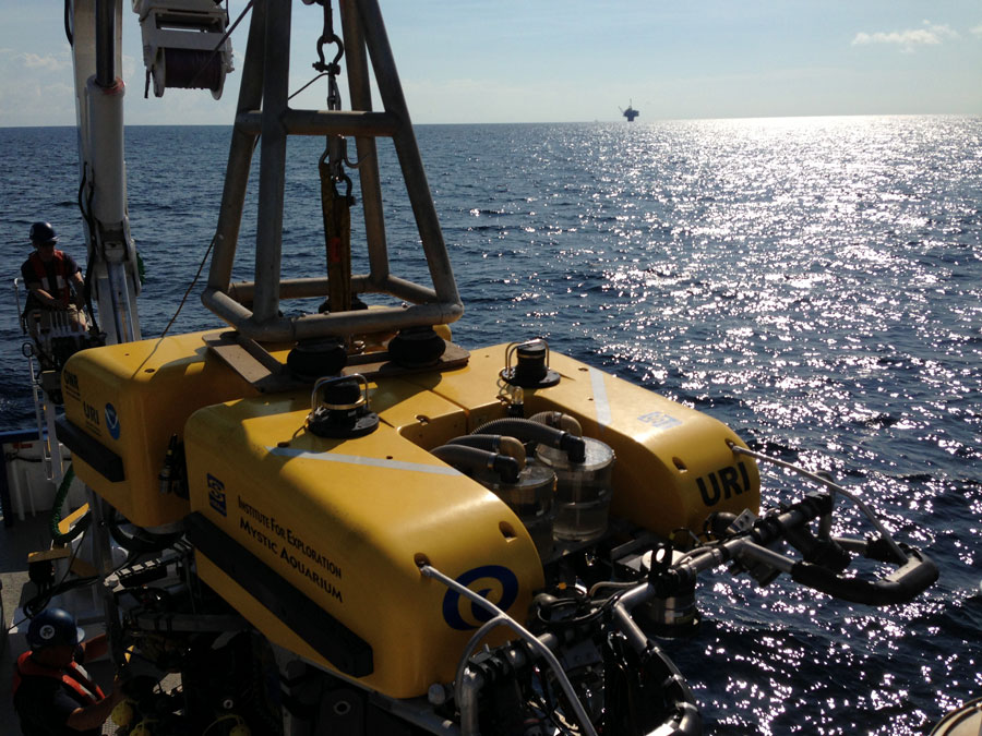 <div style='color:#000000;'><br /><br /><h2>Getting Hercules into the water for the first time on this cruise to study the impact of the Deepwater Horizon oil spill on the deep sea communities in the Gulf of Mexico. </h2>Photo courtesy of&nbsp;Samantha Berlet</div>