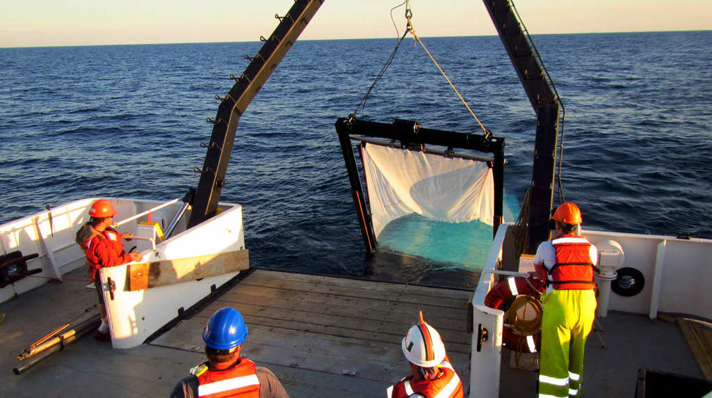 <div style='color:#000000;'><br /><br /><h2>MOCNESS- A Multiple Opening and Closing Net and Environmental Sampling System is used to collect plankton from different depths in the water column.</h2>Photo courtesy of DEEPEND consortium</div>