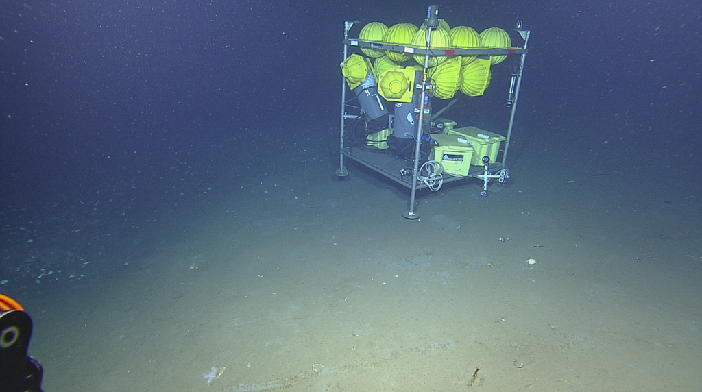 <div style='color:#000000;'><br /><br /><h2>MILET and sensors deployed at 1617 meters depth- Two chimneys with methane, oxygen, temperature, and other sensors have been deployed by the R/V Falkor's Global Explorer ROV. Twin laser beams from its sister Eagle Ray ROV shine down on the chimney closest to the lander.</h2>Photo courtesy of Schmidt Ocean Institute</div>
